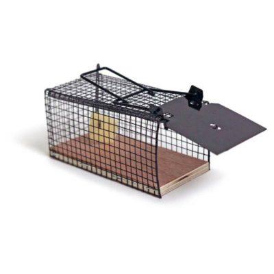 מיני מלכודת עכברים הומנית | מיני מאוס