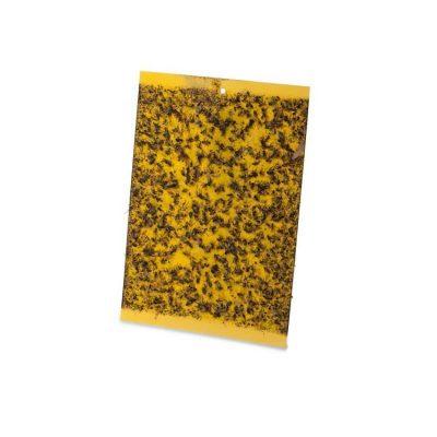 מלכודת זבובים ומעופפים | הלוחית הצהובה L